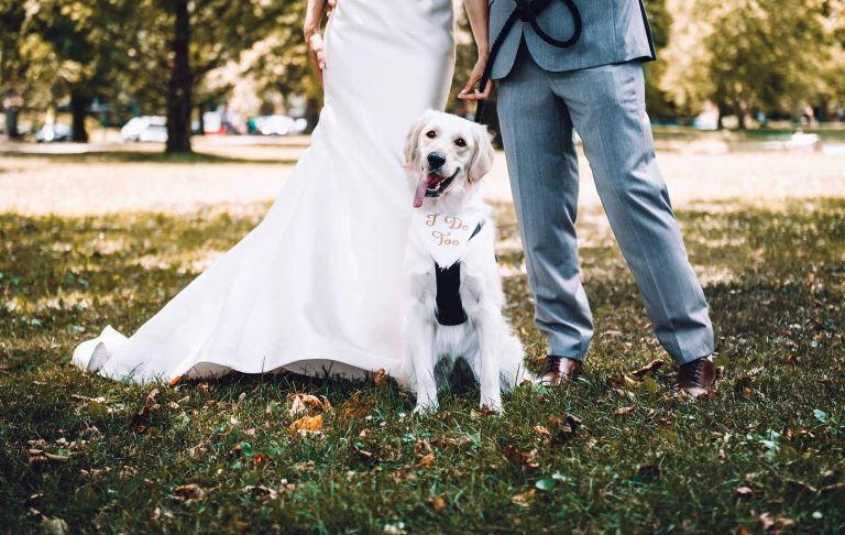 Dog as your Best Man